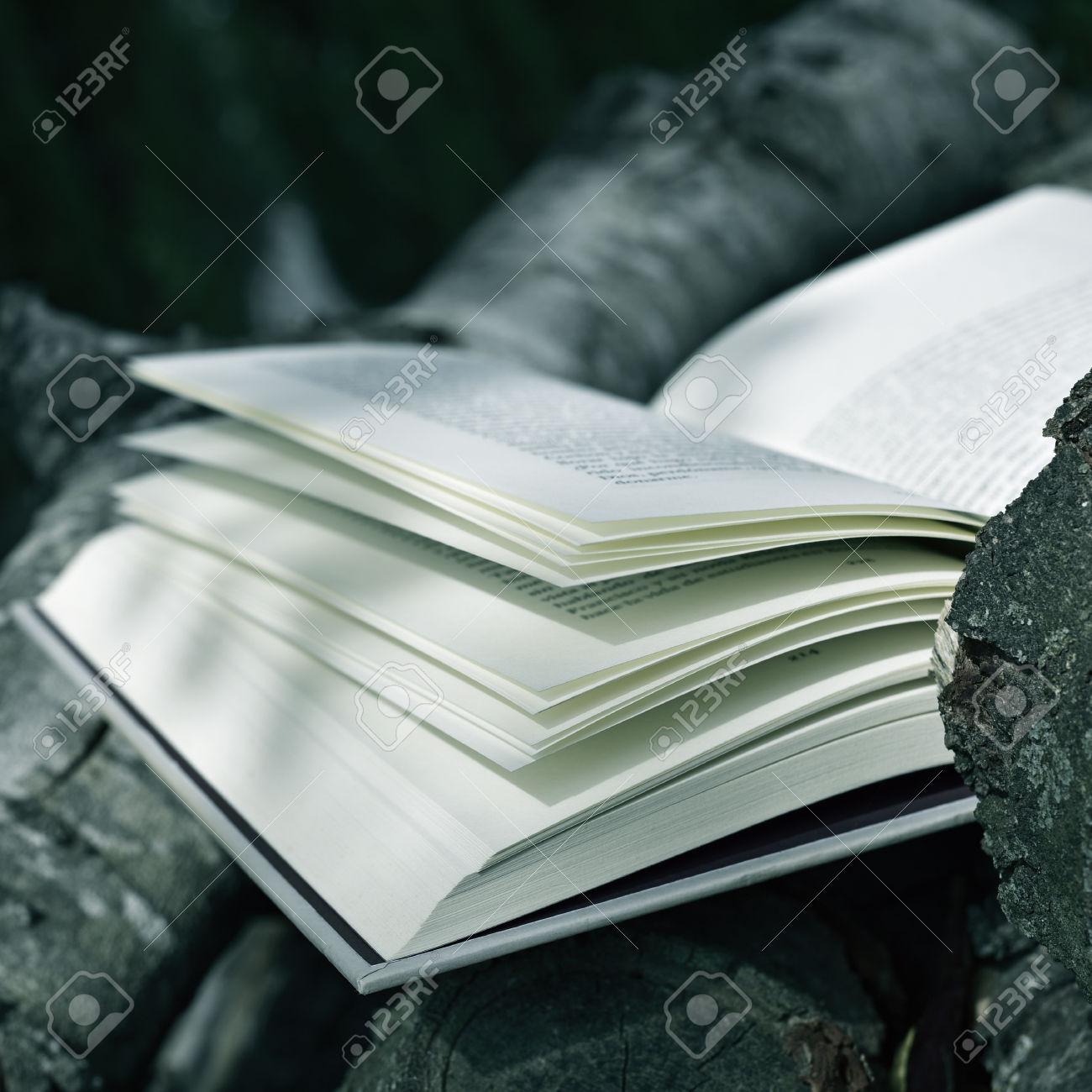 book in a rustic scenery
